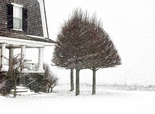 Snowy Bluff
