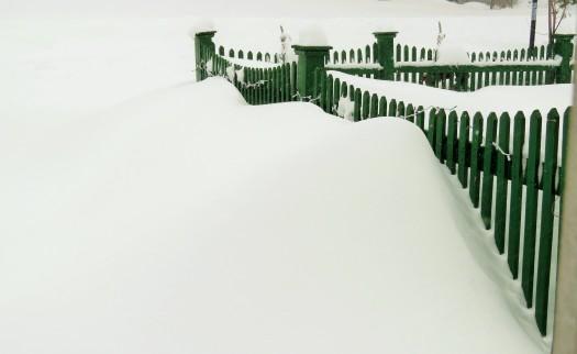 Marshmallow snow mounds.